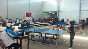 tenis de mesa 12