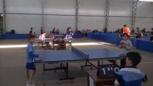 tenis de mesa 8